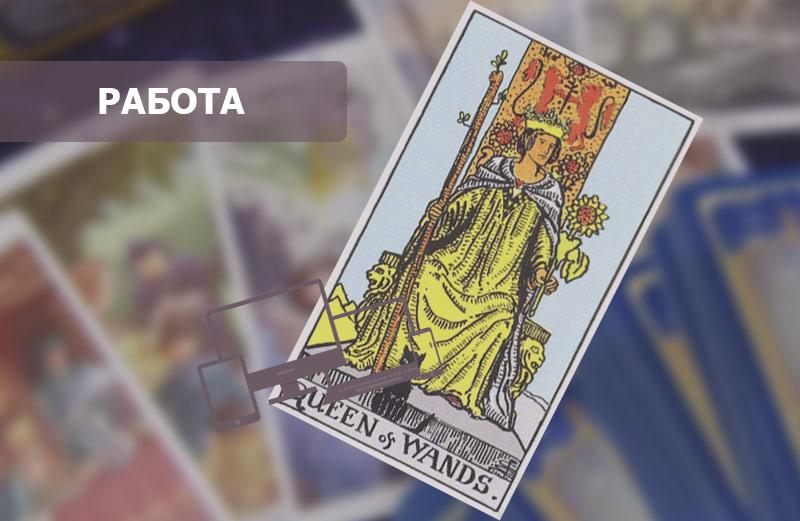 Королева Посохов (Жезлов) Таро: значение в работе