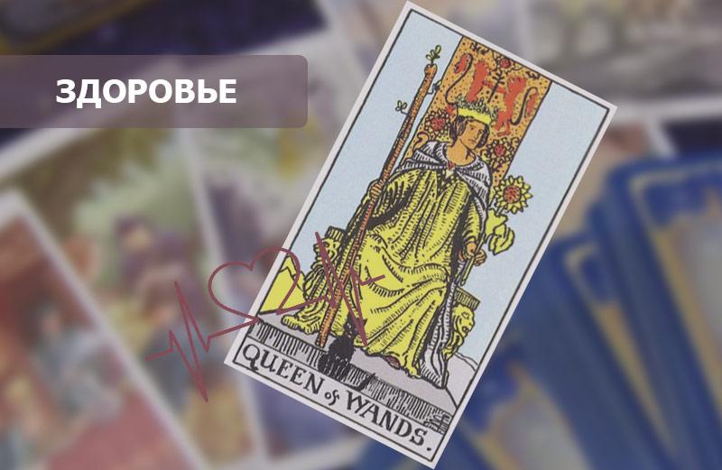 Королева Посохов (Жезлов) Таро: значение в здоровье