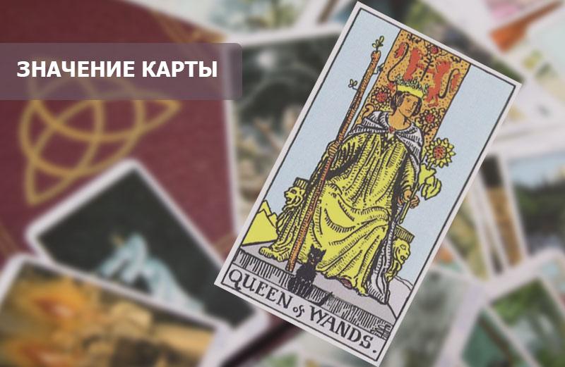 Королева Посохов (Жезлов) Таро: значение