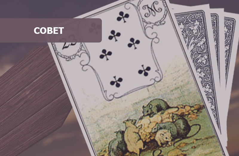 Крысы Ленорман: совет карты