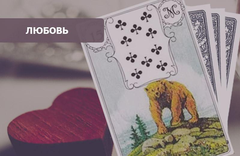 Медведь Ленорман: значение в любви