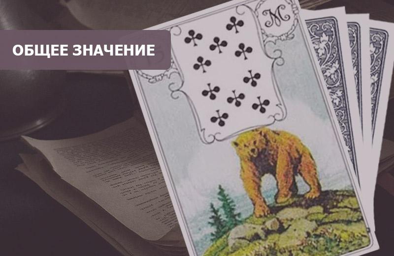 Медведь Ленорман: значение