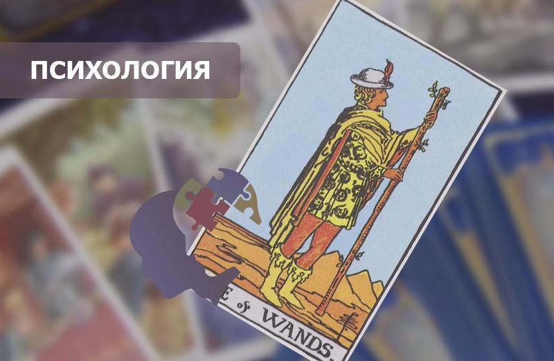 Значение карты Таро Паж Жезлов
